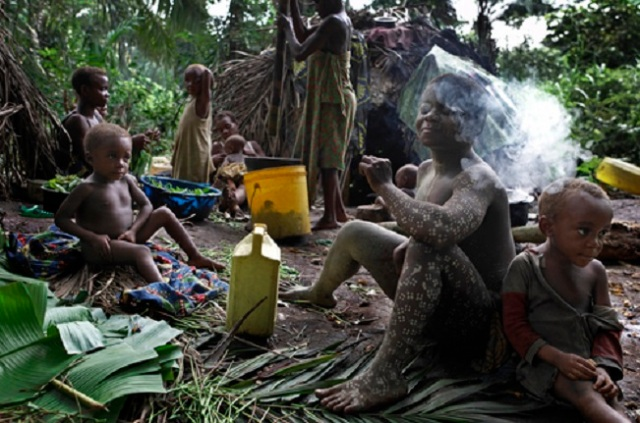 Mbuti Pygmies at a forest hunting camp.