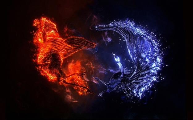 -Ice-Blue-Red-Fire-Phoenix-Fantasy-Art-Fresh-New-Hd-Wallpaper--